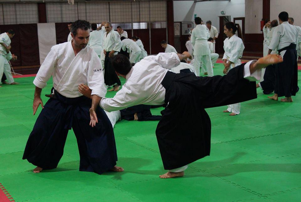 Aikido Taikai 2014 (13)